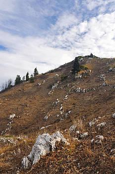 Alpine meadows in autumn by Kirill Puchkov