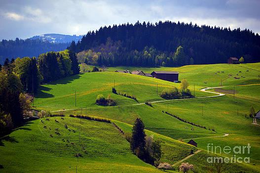 Susanne Van Hulst - Alpine Roads in Switzerland