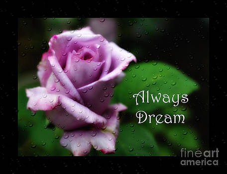 Always Dream by Eva Thomas