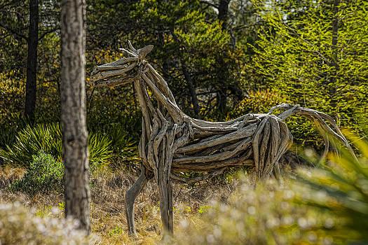 Alys Beach Driftwood Horse by Frank Feliciano