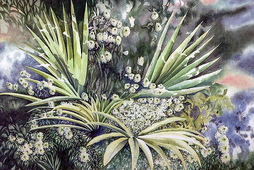 Alyssum and Short Palm Plant by Martha Shilliday
