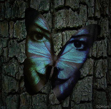 Am I a Butterfly Dreaming I Am a Human ? by Gianni Sarcone