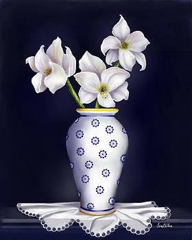 Amaryllis by Sena Wilson