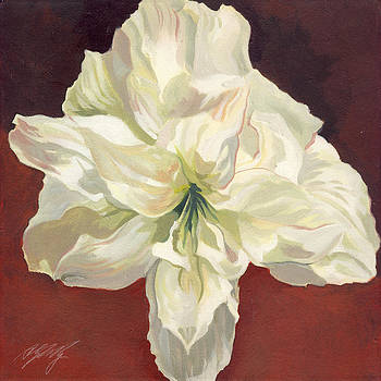 Alfred Ng - Amaryllis with red