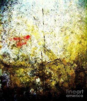 Amatarii by Alex Blaha