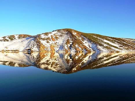 Amazing Water Reflection  by Faouzi Taleb