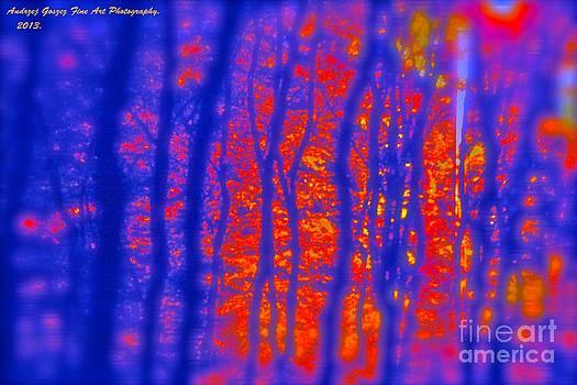 Amber fire. by  Andrzej Goszcz