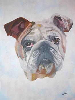 Tracey Harrington-Simpson - American Bulldog Pet Portrait