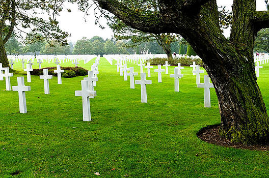 American Cemetery at Normandy by Tammy Abrego