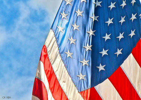American flag and all it's glory by Lorella  Schoales