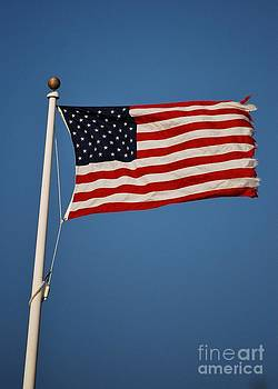Joy Bradley - American Flag