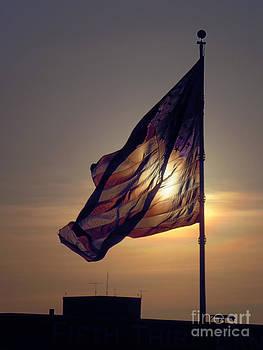 American Flag by Tom Hubbard