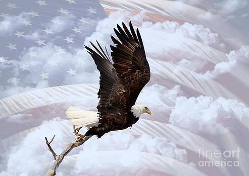 American Pride by Lori Tordsen