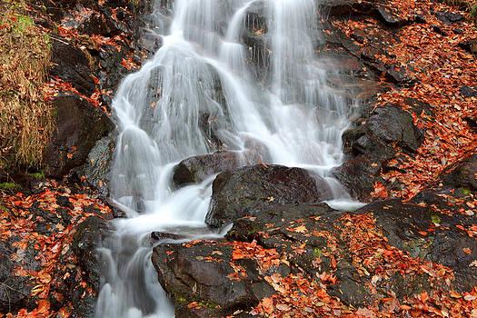 Amicalola Falls 1 by David Kittrell