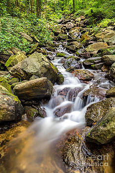 Amicalola Falls by Bernd Laeschke