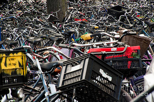 Amsterdam Bicycles in Color by Amy Bynum