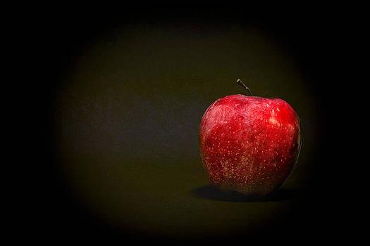 Jeff Burton - An Apple a Day