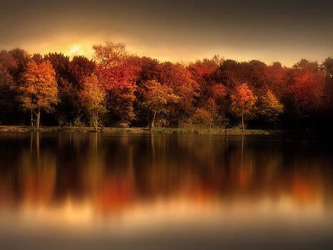 An Autumn Evening by Jennifer Woodward