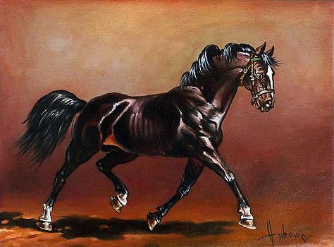 An irrepressible stallion by Dusan Vukovic