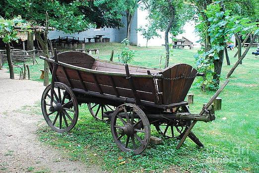 Joe Cashin - An old Hungarian wagon