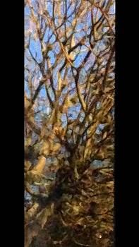 Ancestors Series IV by Kerrie B Wrye