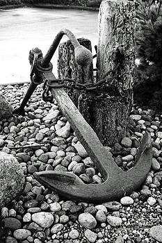 Anchor by Alison Tomich