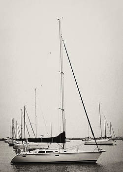 Anchored Away by Jessie Gould