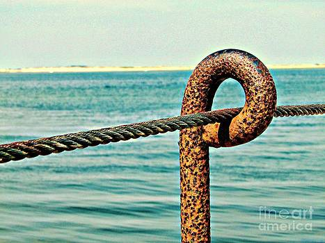 Anchored by Roxanne Marshal