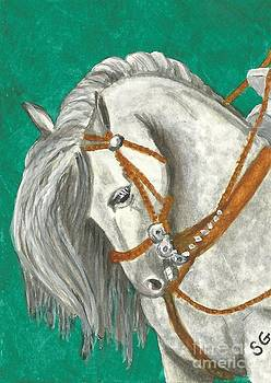 Andalusian Horse - Gorgeous and Gray on Green by Sherry Goeben