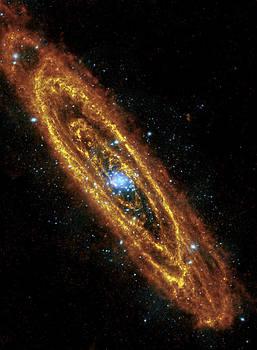 Adam Romanowicz - Andromeda Galaxy