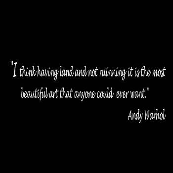Andy Warhol Quote by Carolyn Repka