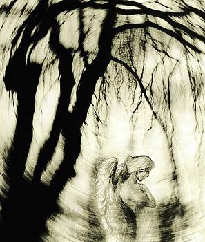 Angel by Michaela Stejskalova