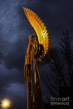 Steve Purnell - Angel Of The Morning Textured