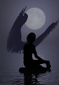 Angel Silhouette  by Mark L Watson