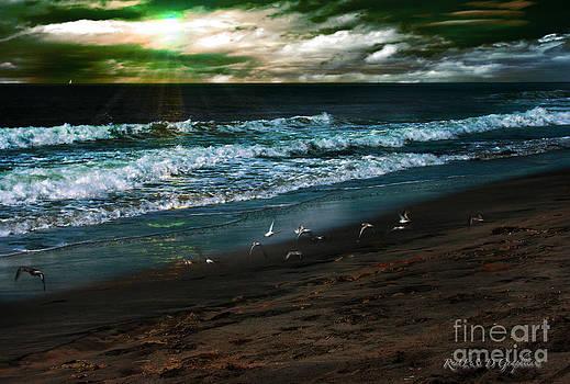 Rhonda Strickland - Angry Skies