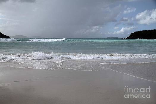 Angry Trunk Bay by Betty Morgan