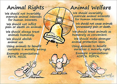 Animal Rights vs Welfare by Ben Isacat