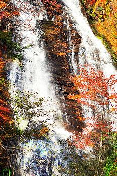 Anna Ruby Falls....... by Tanya Tanski