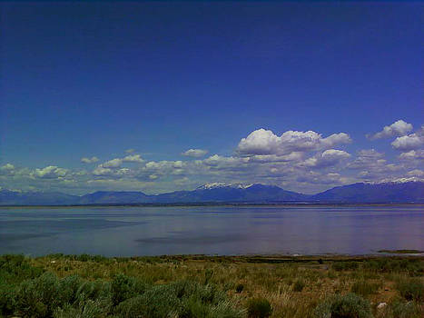 Antelope Island by Patricia Erwin