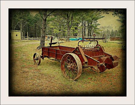 Antique Farm Wagon by Dianne  Lacourciere