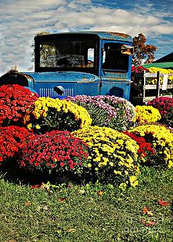 Antique Truck And Flowers by Kathleen Struckle