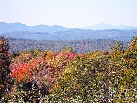 Apple Orchard Overlook by Lisa J Gifford