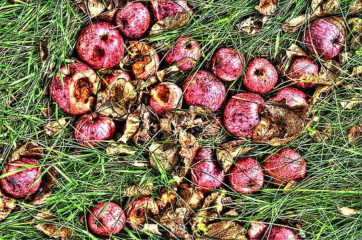 Apples by Duncan  Way