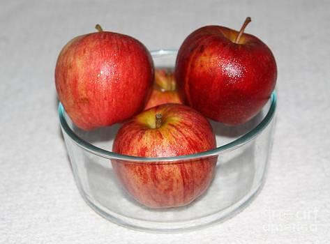 Apples for the teacher by Freda Sbordoni