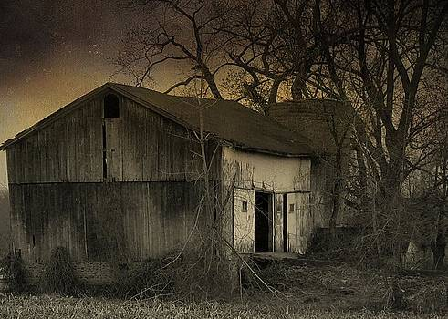 Gothicolors Donna Snyder - Approaching Nightfall