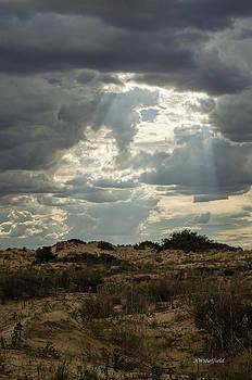 Allen Sheffield - Approaching Storm 2