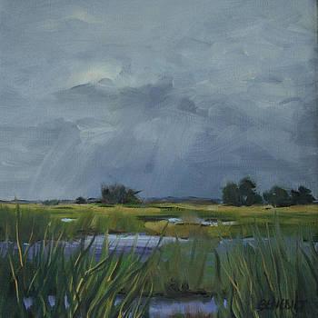 Approaching Storm by Barbara Benedict Jones