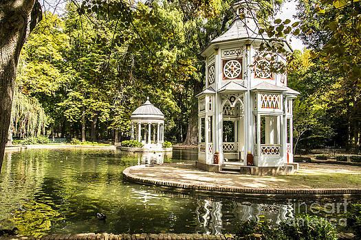 Aranjuez park lake by Stefano Piccini