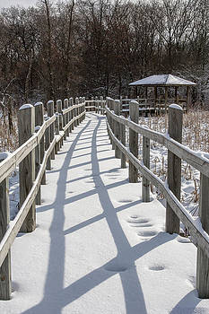 Steven Ralser - Arboretum boardwalk - Madison - Wisconsin