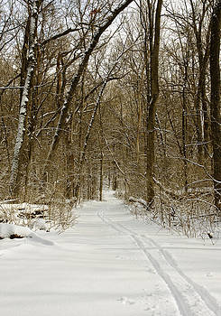 Steven Ralser - Arboretum trail - Madison - Wisconisn